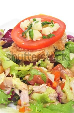 garden salad Stock photo © nito