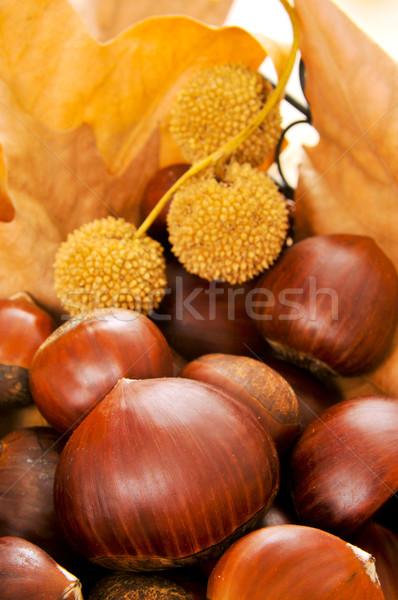 Primer plano hojas de otoño frutas otono comer dulce Foto stock © nito
