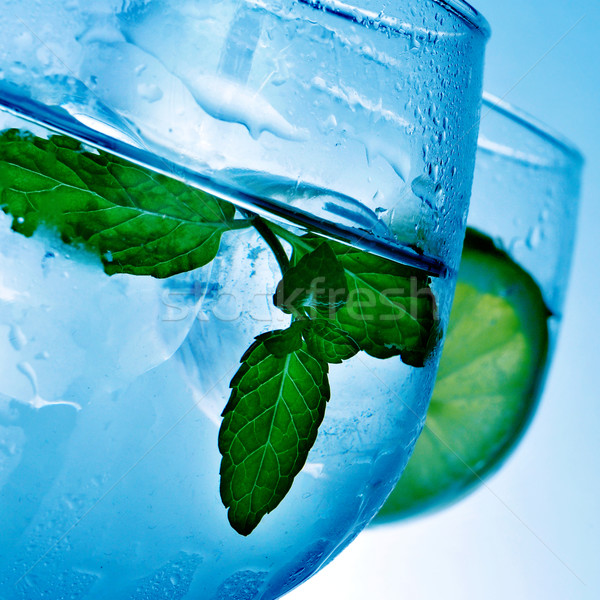 gin and tonic Stock photo © nito