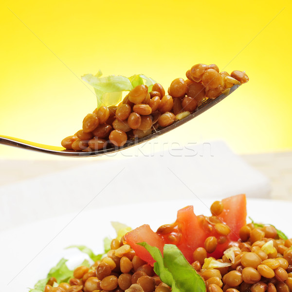 Lencse saláta közelkép tányér frissítő bár Stock fotó © nito