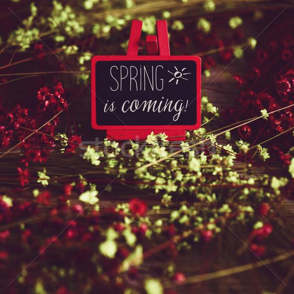 çiçekler tahta metin bahar kırmızı şövale Stok fotoğraf © nito