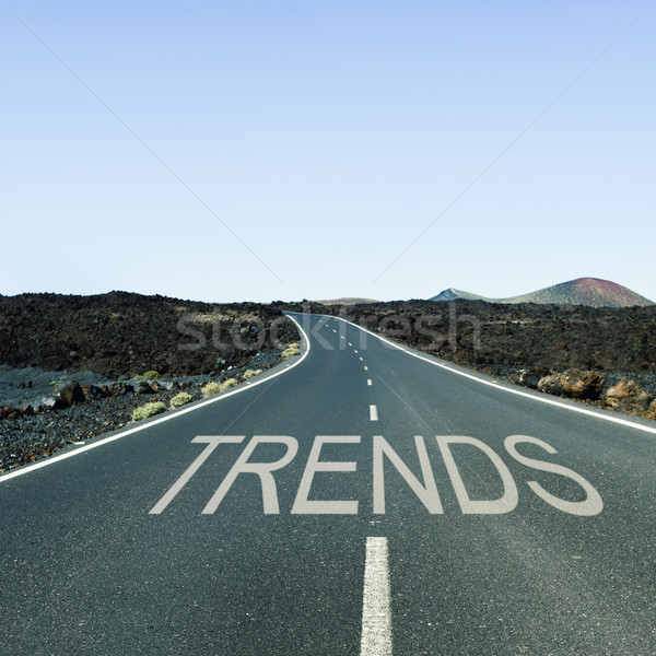 word trends in a lonely road Stock photo © nito