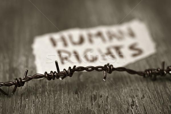 Alambre de púas texto derechos humanos primer plano pieza papel Foto stock © nito