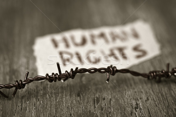Dikenli tel metin insan hakları parça kâğıt Stok fotoğraf © nito