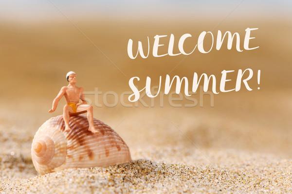 Miniatuur man zwempak tekst welkom zomer Stockfoto © nito