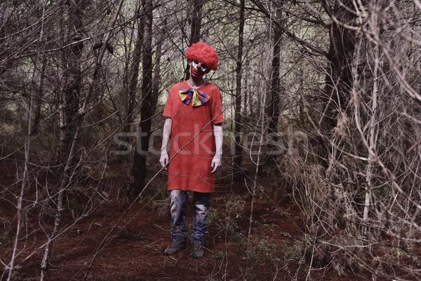 Scary зла клоуна лесу красный Сток-фото © nito