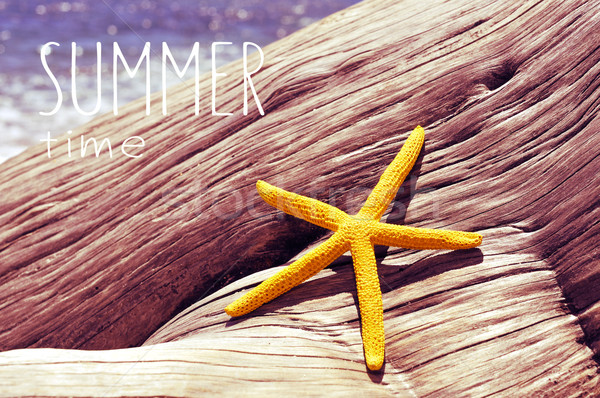 text summer time and a starfish on an old tree trunk in the beac Stock photo © nito