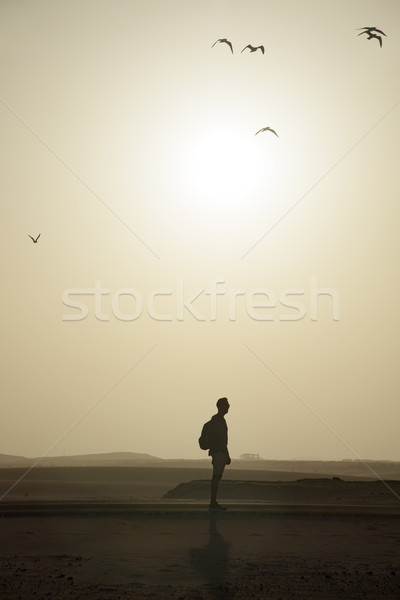 man with a backpack in the roadside in the desert Stock photo © nito