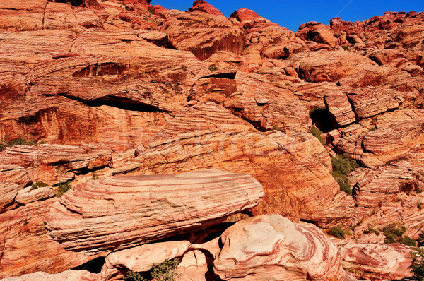 Red Rock Canyon National Conservation Area, Nevada, United State Stock photo © nito
