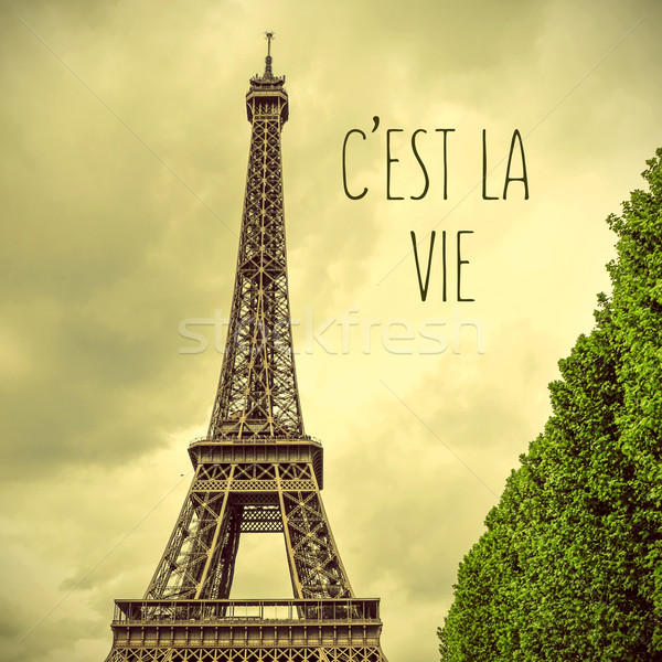 Eiffel Tower and text cest la vie, that is life in french Stock photo © nito