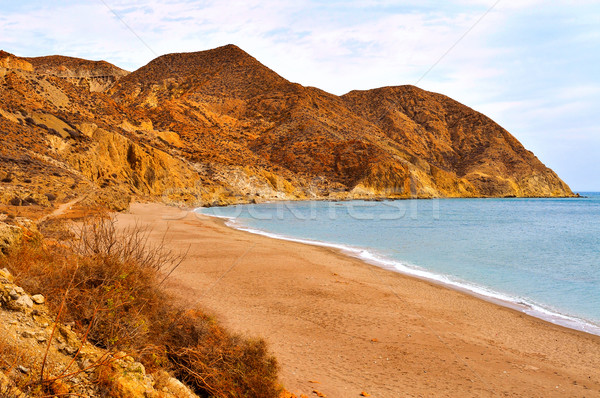 Algarrobico Beach in the Cabo de Gata-Nijar Natural Park, in Spa Stock photo © nito