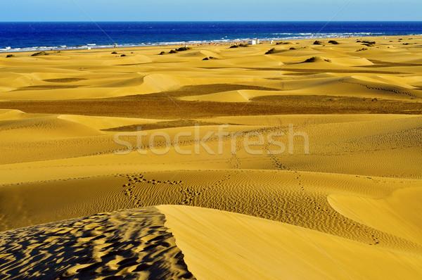 Naturales reserva España vista canarias Foto stock © nito