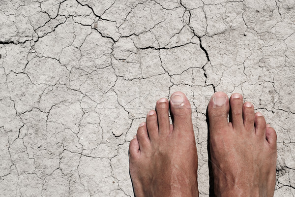 bare feet of a man on a cracked dry soil Stock photo © nito