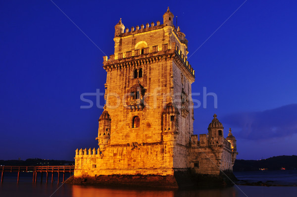 Belem Tower in Lisbon, Portugal Stock photo © nito