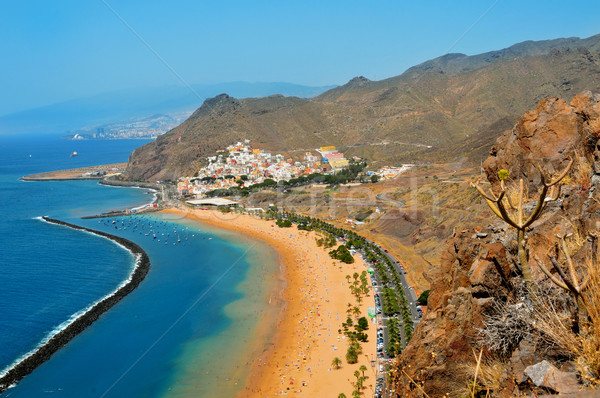 Praia tenerife canárias Espanha natureza Foto stock © nito