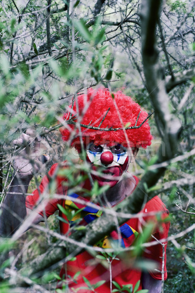 Scary zło clown lesie Zdjęcia stock © nito