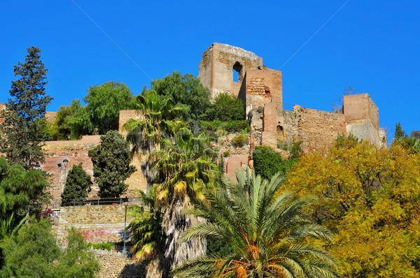 малага Испания мнение небе пейзаж саду Сток-фото © nito