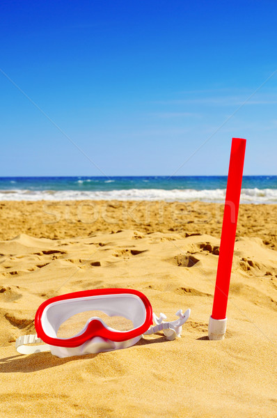 diving mask and snorkel in the sand of a beach Stock photo © nito