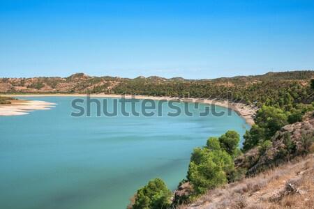 водохранилище мнение реке морем природы деревья Сток-фото © nito