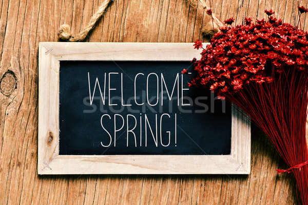 flowers and blackboard with the text welcome spring Stock photo © nito