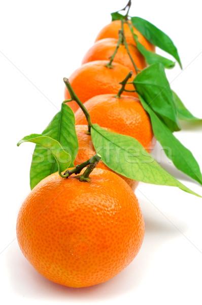 Mandarijn- sinaasappelen witte blad vruchten Stockfoto © nito
