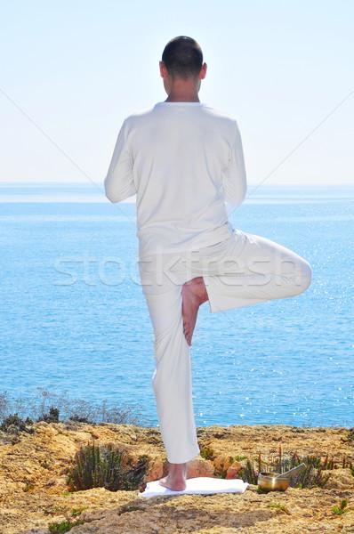yoga tree pose Stock photo © nito