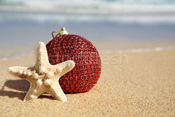 Natal bola starfish areia praia Foto stock © nito