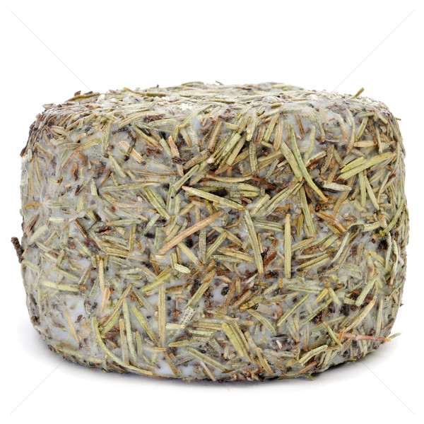 handmade rosemary-coated cheese from Spain Stock photo © nito
