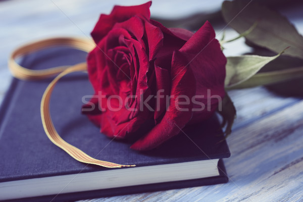 Rote Rose Flagge Buch Name Stock foto © nito