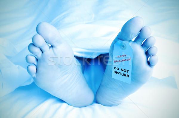 Hulla lábujj címke szöveg boldog halloween Stock fotó © nito