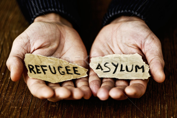 pieces of paper with words refugee and asylum Stock photo © nito