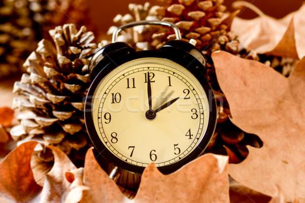 Verano tiempo primer plano despertador hacia atrás Foto stock © nito