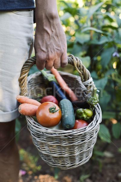 Fiatalember kosár tele zöldségek közelkép fiatal Stock fotó © nito