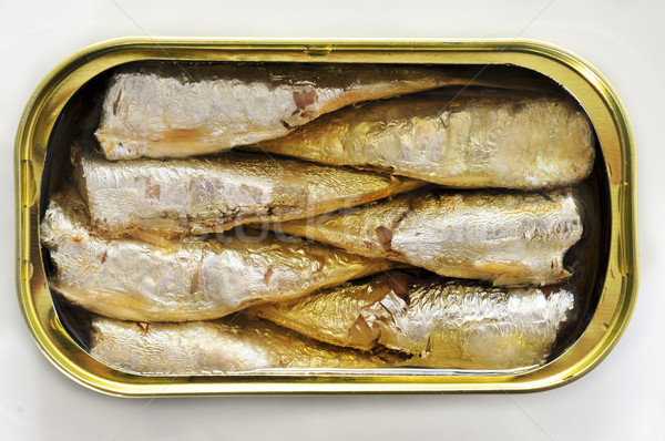 canned sardines Stock photo © nito