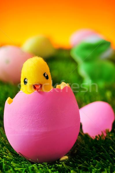 Plüssmaci csirke rózsaszín húsvéti tojás fű zöld Stock fotó © nito