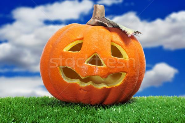 Halloween jack-o-lantern Stock photo © nito