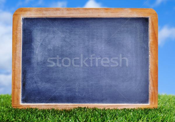 blank blackboard on the grass Stock photo © nito