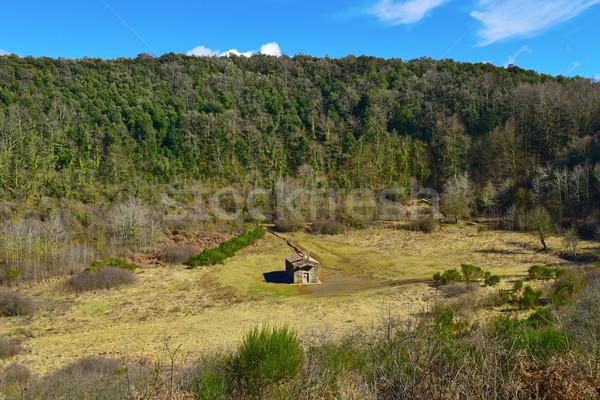 Santa Margarida Volcano in Olot, Spain Stock photo © nito