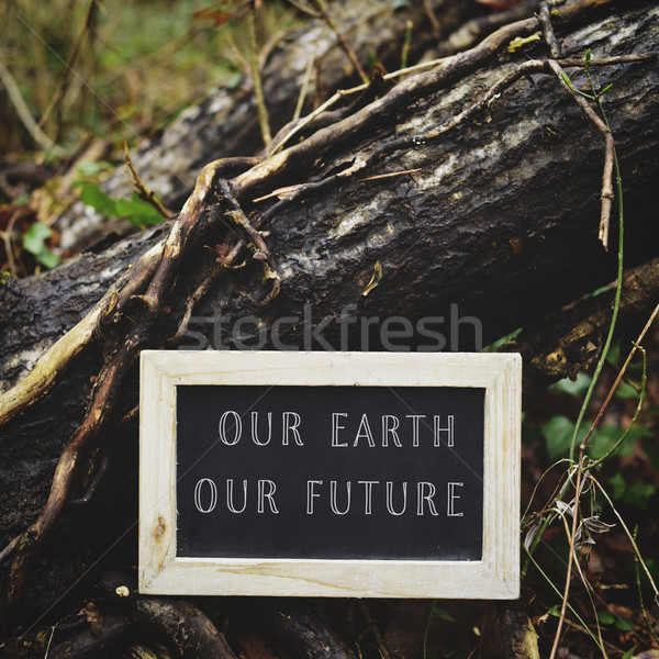 chalkboard with the text our earth our future Stock photo © nito