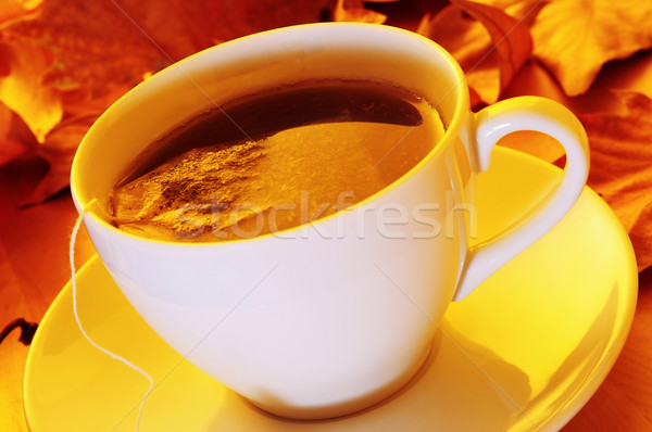cup of tea Stock photo © nito