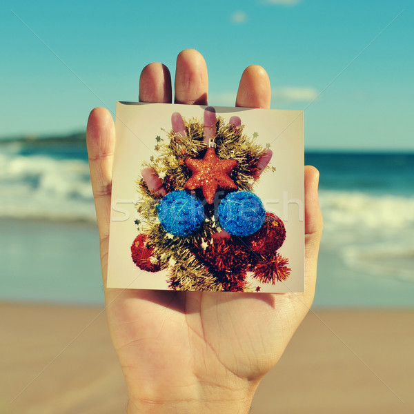 christmas tree on the beach Stock photo © nito