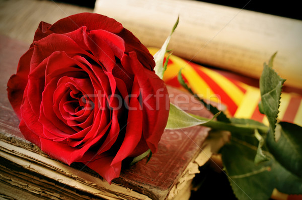 book, red rose and the catalan flag for Sant Jordi, Saint George Stock photo © nito