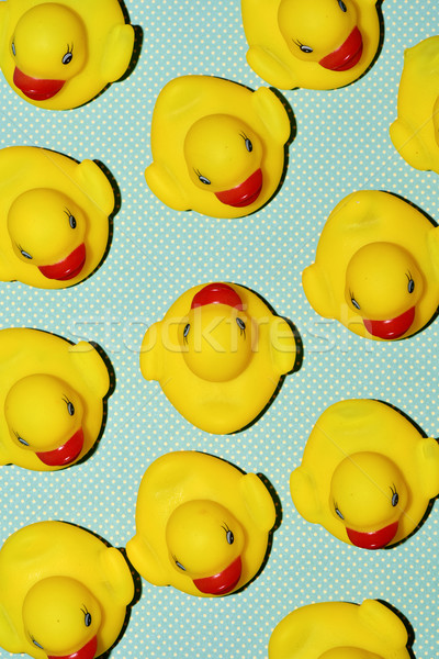 rubber ducks on a dot-patterned background Stock photo © nito