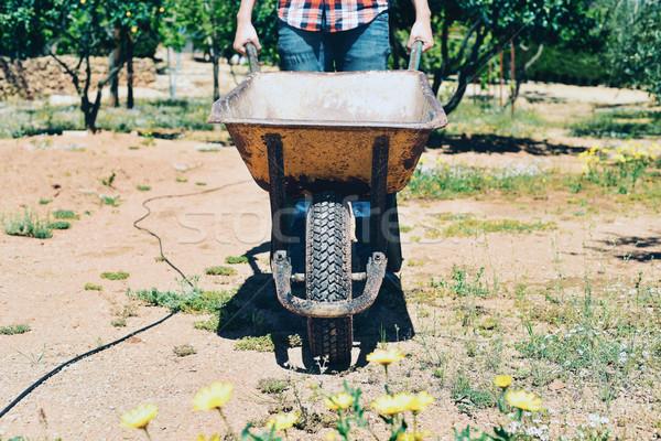 Genç çiftçi adam itme el arabası Stok fotoğraf © nito