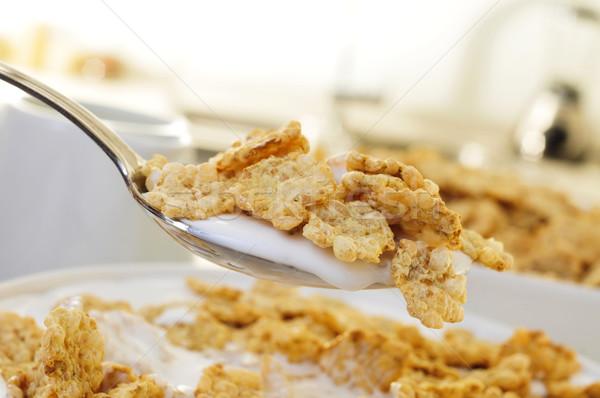 breakfast cereals soaked in milk Stock photo © nito