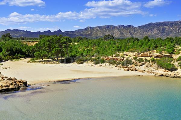 Playa España vista agua océano arena Foto stock © nito