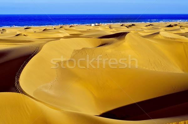 Natural rezerva Spania vedere insulele canare Imagine de stoc © nito