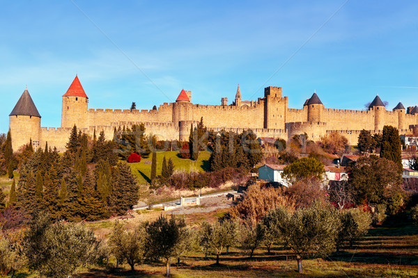 Cite de Carcassonne, in Carcassone, France Stock photo © nito