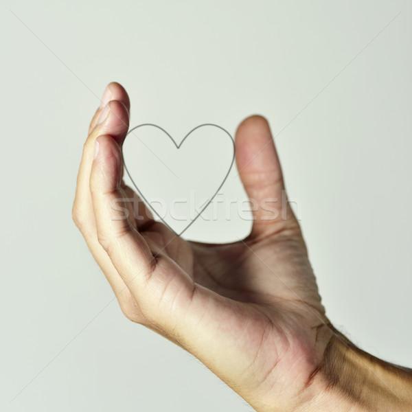 Hart hand man jonge kaukasisch Stockfoto © nito