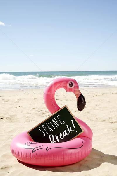 Szöveg tavaszi szünet tengerpart írott úszás gyűrű Stock fotó © nito